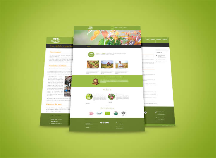 Phaelflor Export : site web